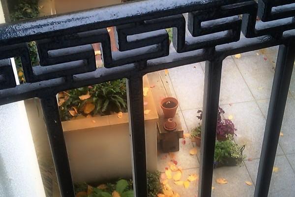 Bespoke steel railings